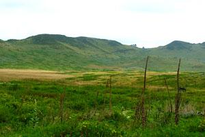 Guassa Plateau